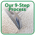 Eco Choice 9 Step Cleaning Process